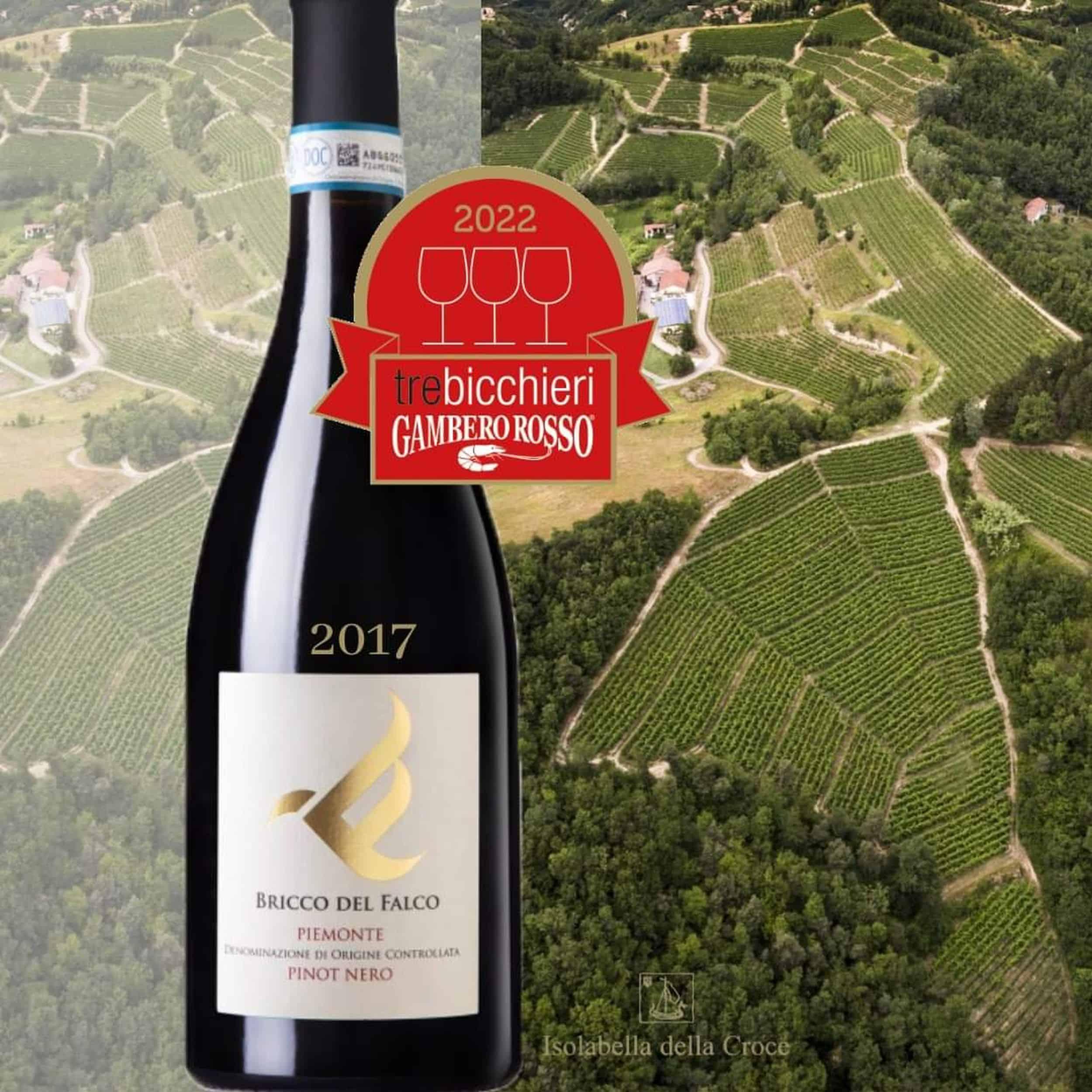 Pinot Nero Bricco del Falco 2017